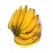 ketahui manfaat mengunsumsi pisang ambon bagi Si Kecil