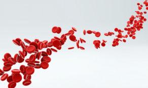 pentingnya kandungan hemoglobin di dalam tubuh