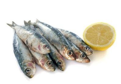 banyak mengonsumsi ikan sarden menyebabkan asam urat tinggi