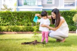manfaat aktivitas berkebun bagi anak