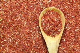 manfaat beras merah untuk diabetesi